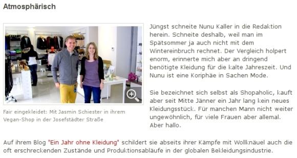 Screenshot Kurier.at